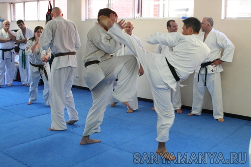 World Fighting Kyokushin Organization - WFKO